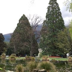 Queenstown Gardens User Photo
