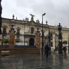 University of Seville User Photo