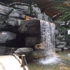 Jintai Hot Spring Resort User Photo