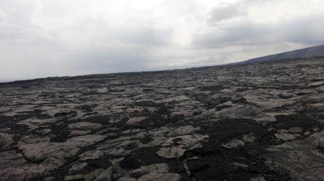Island Lava Java