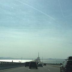 棧橋用戶圖片