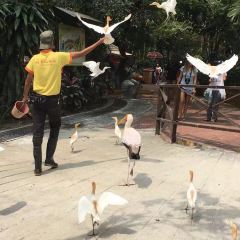 Bird Park User Photo