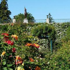 主教花園用戶圖片