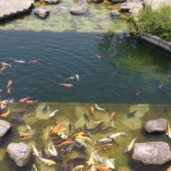 구라바엔 여행 사진