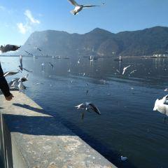 海埂大壩用戶圖片