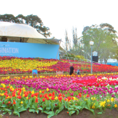 Floriade User Photo