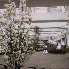 萊錦文化創意產業園用戶圖片
