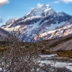Mount Cook User Photo