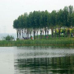 汾河公園用戶圖片