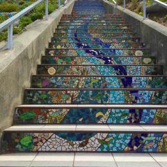 Moraga Steps User Photo
