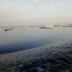海陵湖用戶圖片