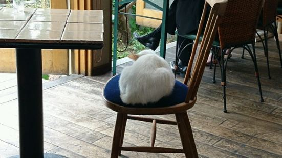 咖啡館很溫暖
