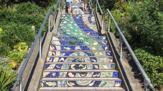 16 Avenue Tiled Steps