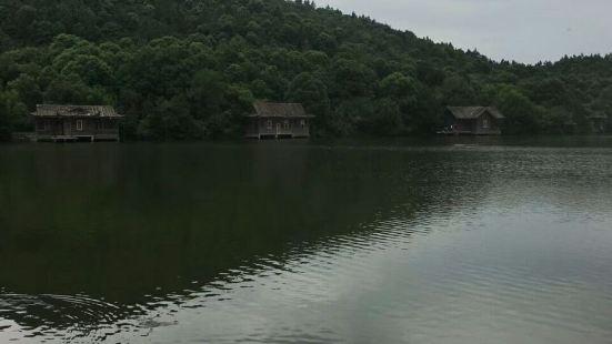 Dashishanlvyou Farm