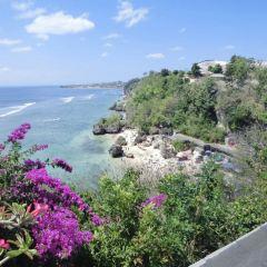 Goa Gajah User Photo
