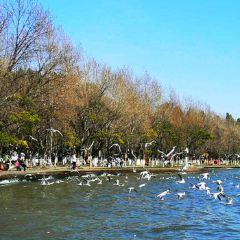 Dian Lake User Photo