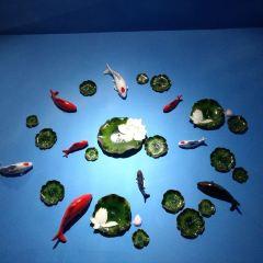 중태 해양세계관 여행 사진