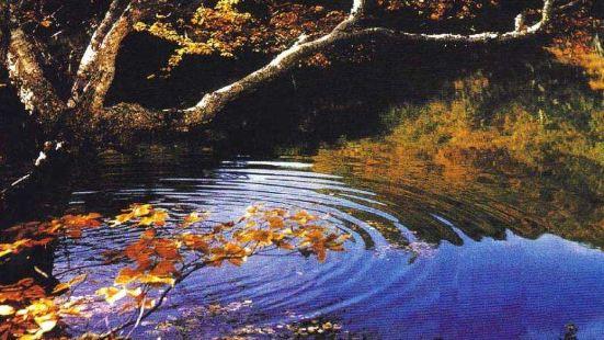 黃泥河保護區