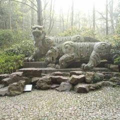 虎跑公園用戶圖片