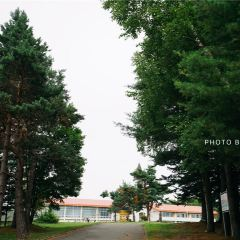 Bibaushi Primary School User Photo