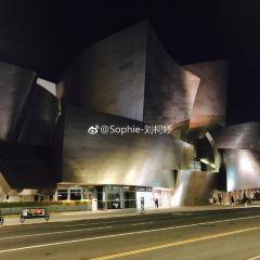 Walt Disney Concert Hall User Photo