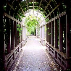 漢密爾頓花園用戶圖片
