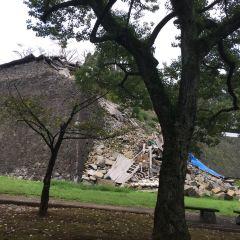 熊本城のユーザー投稿写真