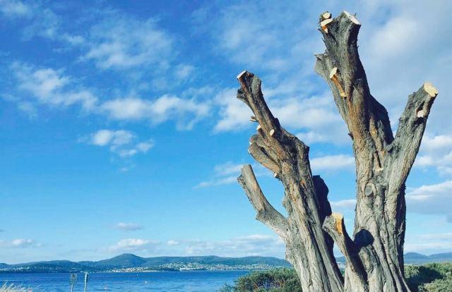 브루니 섬