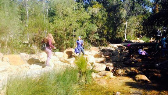 Rio Tinto Naturescape Kings Park