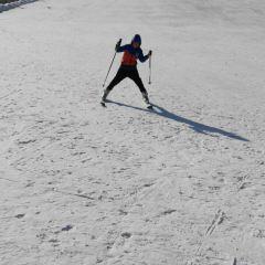 추라이산 스키장 여행 사진