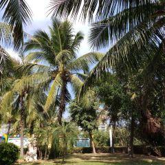 Sanyachengshi Park User Photo
