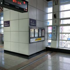 Busan Metro User Photo