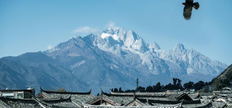 Lijiang Ancient City3