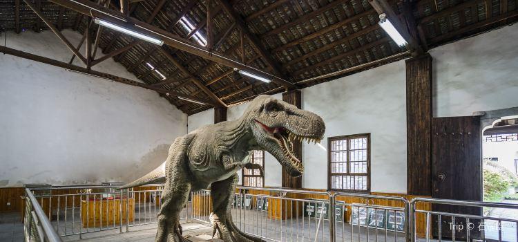 恐龍化石館3