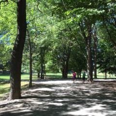 皇家山公園用戶圖片