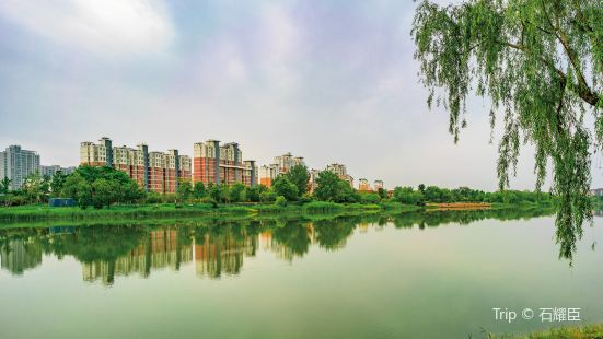 Huanghe Ecological Park