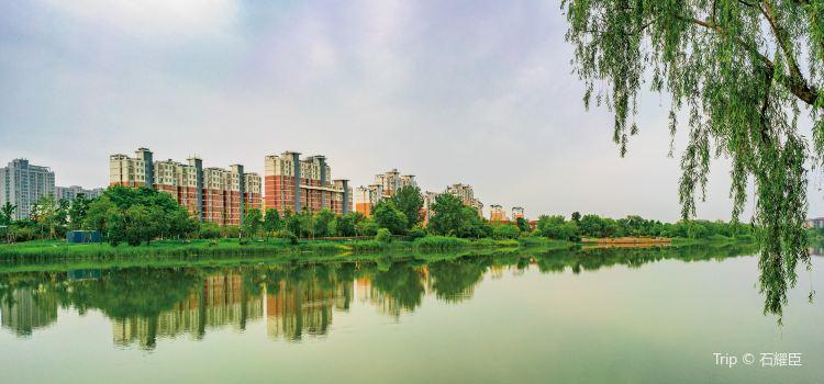 黃河生態園