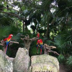 Xcaret Park User Photo