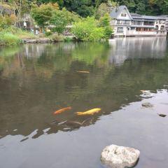 由布院温泉のユーザー投稿写真