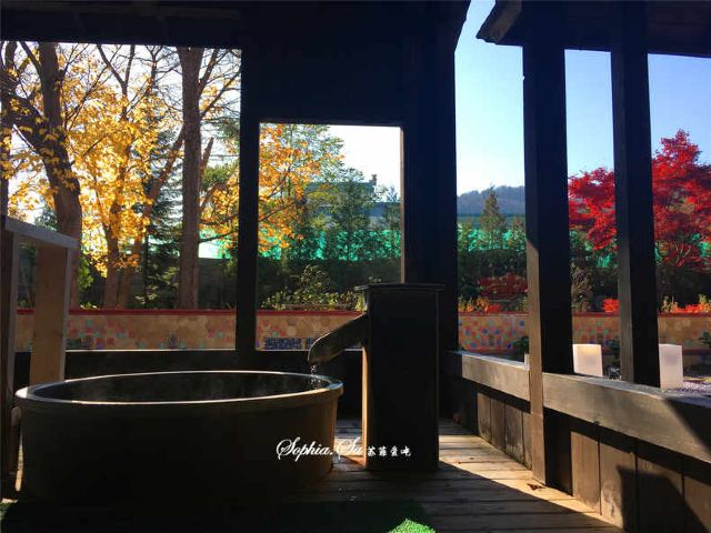 【2017年亞洲】我在北海道深秋季節重回校園尋找金黃的銀杏絕景