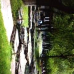 丹普樂公園用戶圖片