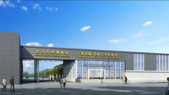 武漢自然博物館·貝林大河生命館
