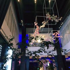 Da Dong ( Gong Ti Store) User Photo