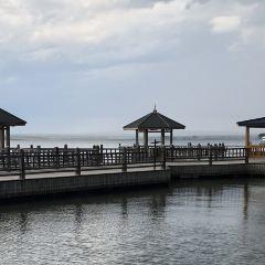 五大連池風景區白龍湖露營旅遊基地用戶圖片