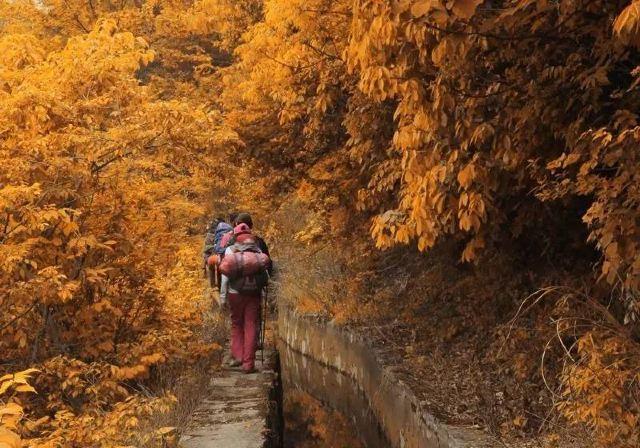 黃山僅佔5%的美,這才是安徽秋天最值得去的地方,不要去錯了!