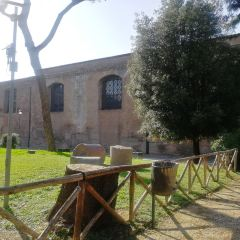 Basilica di Santa Maria degli Angeli e dei Martiri User Photo