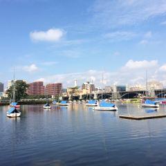 查爾斯河用戶圖片