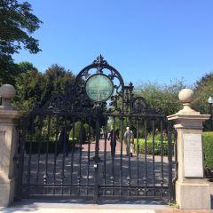 波士頓公共花園用戶圖片