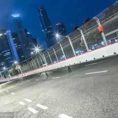 포뮬러 1 싱가포르 그랑프리 여행 사진
