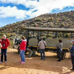 Aquila Private Game Reserve - Day Trip Safari用戶圖片